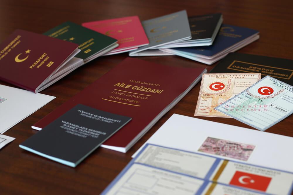 كيف تحصل على الجنسية في تركيا؟ أنواع طلبات الجنسية 1